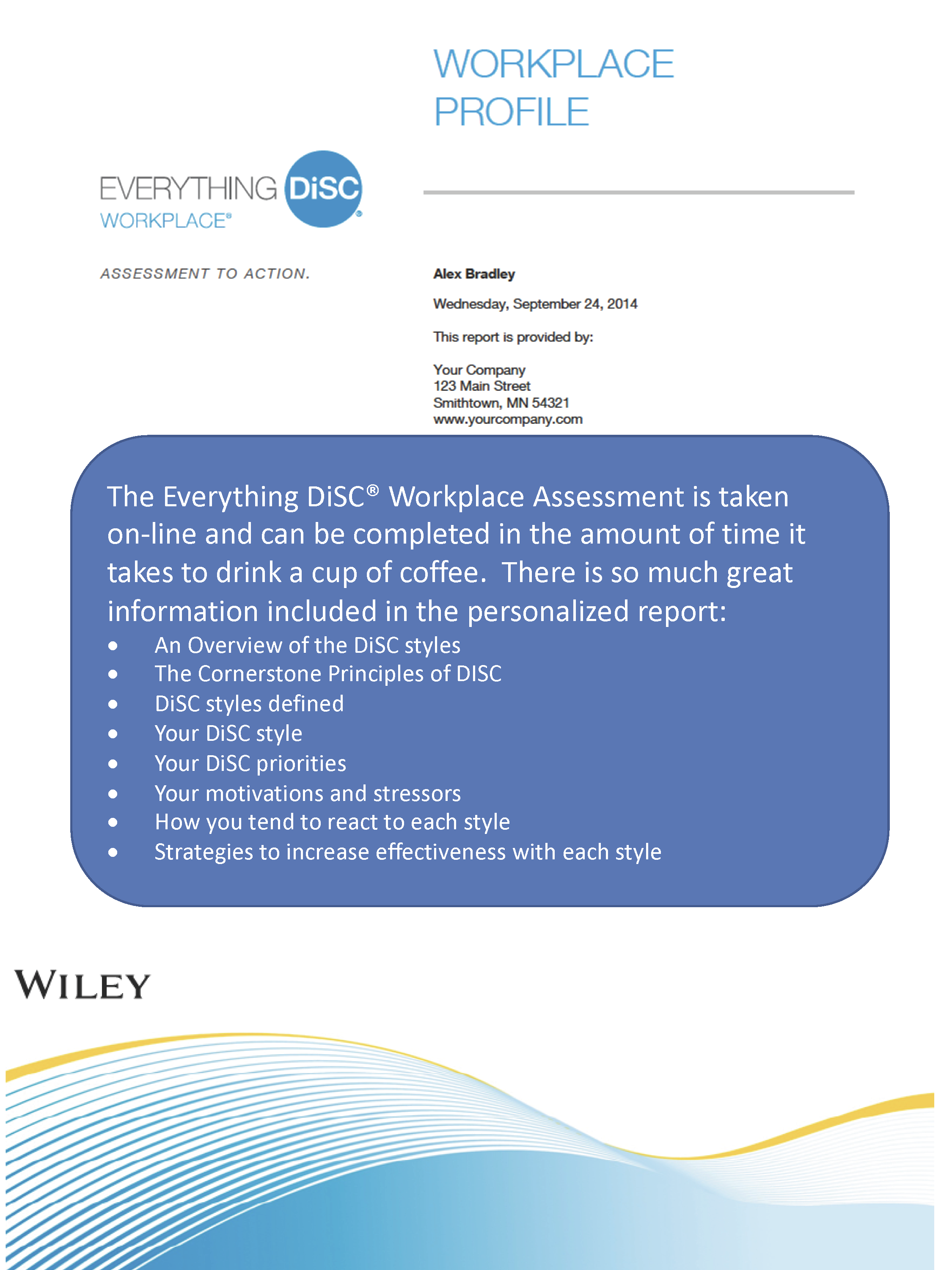 Everything DiSC Workplace Report Sample