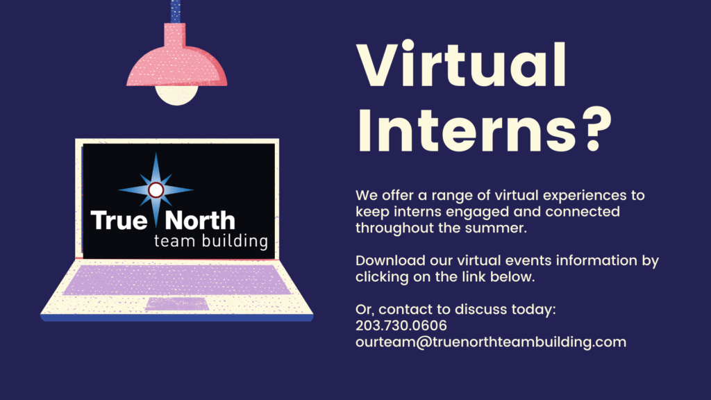 True North Team Building Virtual Intern Programs